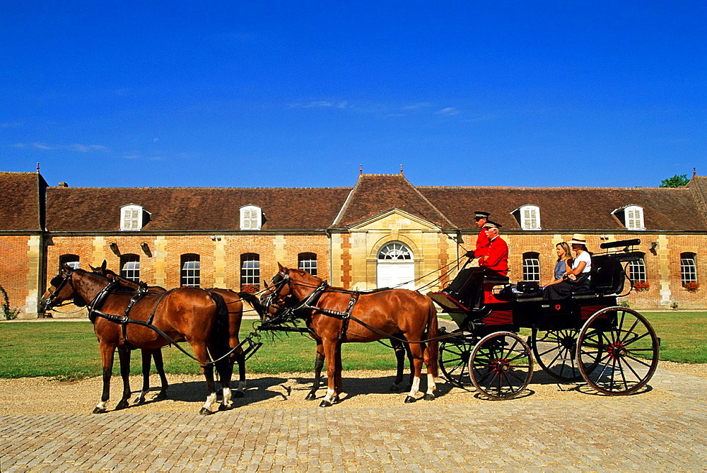 Haras du Pin, Le Pin -au-Haras, Orne department, Lower Normandy region, France, Western Europe.