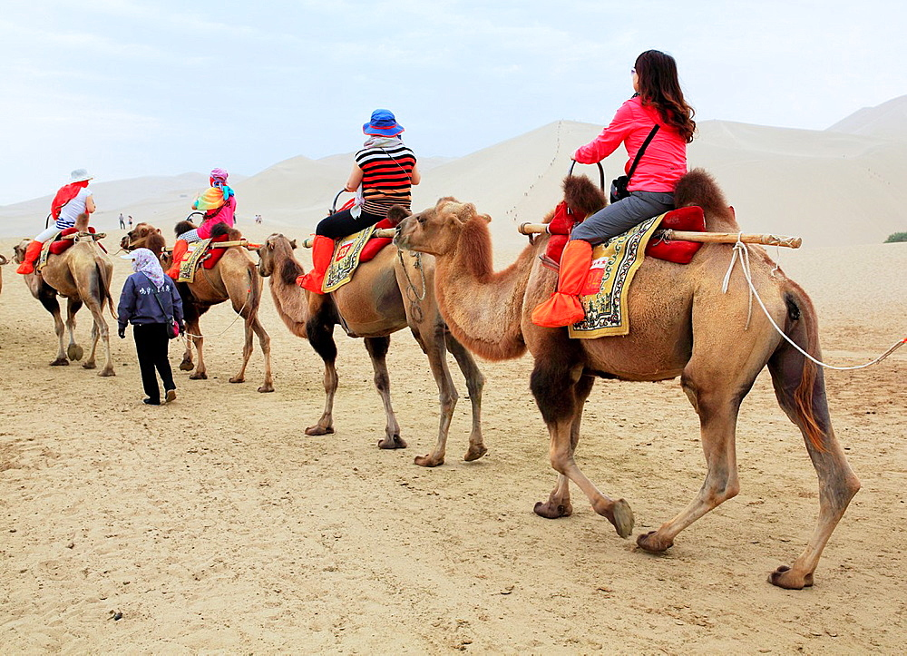 Camels riding near Crescent Lake, Dunhuang, Gansu province, China.