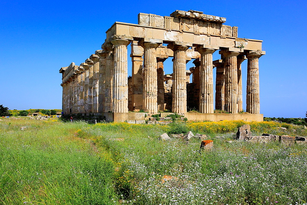 Temple of Hera, Selinunte, Sicily, Italy. - 817-467288