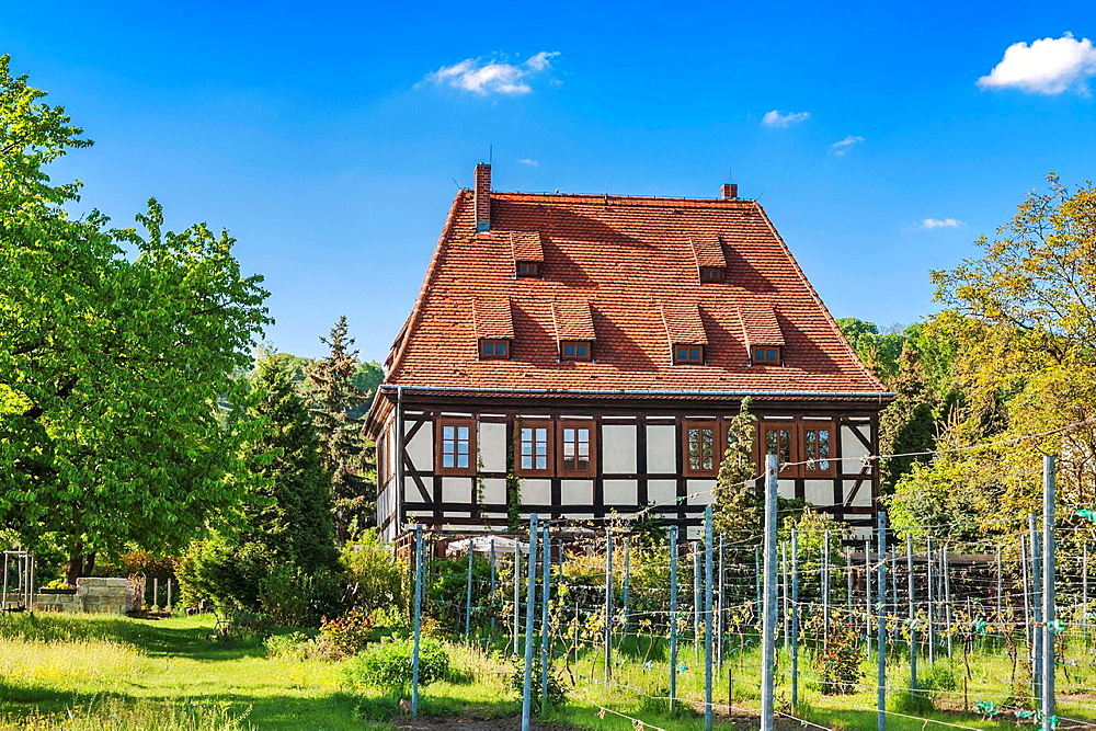 Breitig House is a listed winegrower¥s House. It is one of the oldest preserved vinyard houses and the last pure half-timbered House in Radebeul near Dresden, administrative district Meissen, Saxony, Germany, Europe.