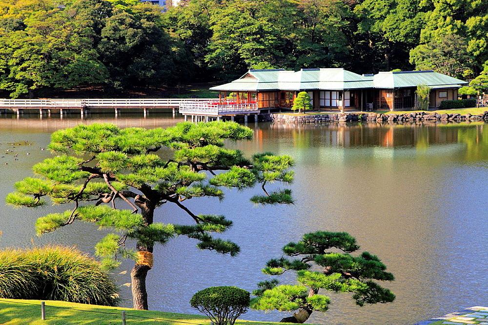 Japan, Tokyo, Hama-rikyu Gardens,.