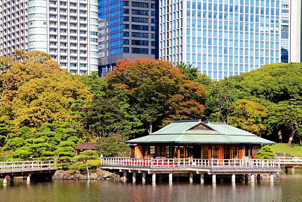 Japan, Tokyo, Hama-rikyu Gardens, Shiodome skyline,.