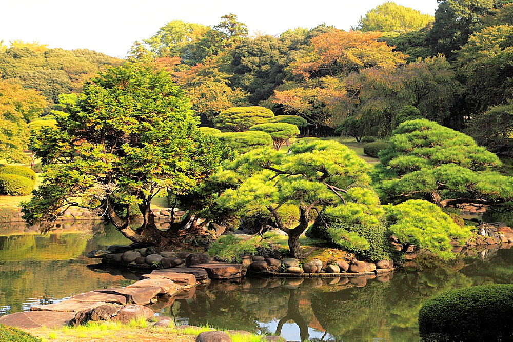 Japan, Tokyo, Shinjuku Gyoen National Garden,.