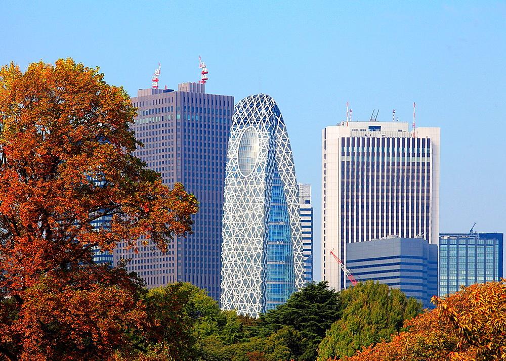Japan, Tokyo, Shinjuku Gyoen National Garden, Shinjuku skyline,.