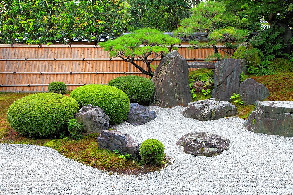 Japan, Kyoto, Daitokuji Temple, Kourin-in, garden,. - 817-470249