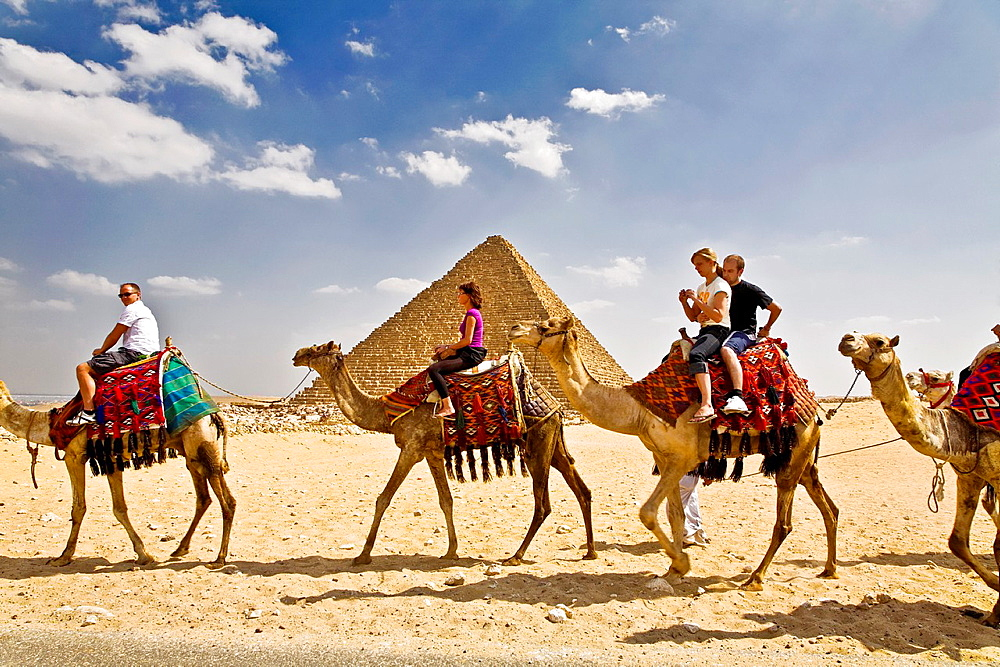 pyramids and camels in cairo.