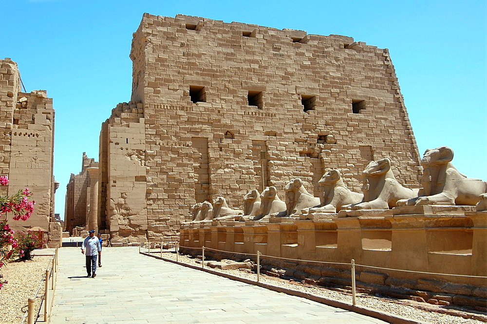 Karnak Temple Complex, Luxor (Thebes), Egypt, Africa.