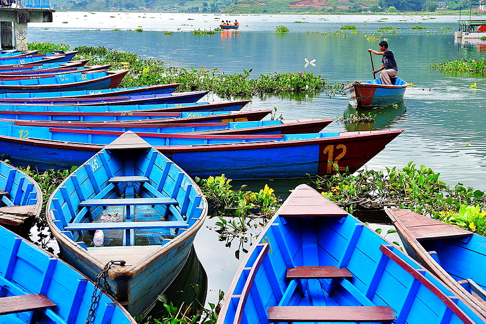 Boats on Lake Phewa Tal, Pokhara, Nepal