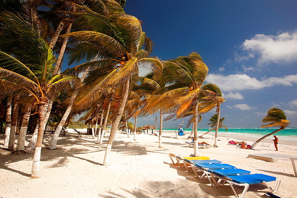 Windy day at Tulum beach, Tulum, Quintana Roo, Yucatan Province, Mexico, North America.