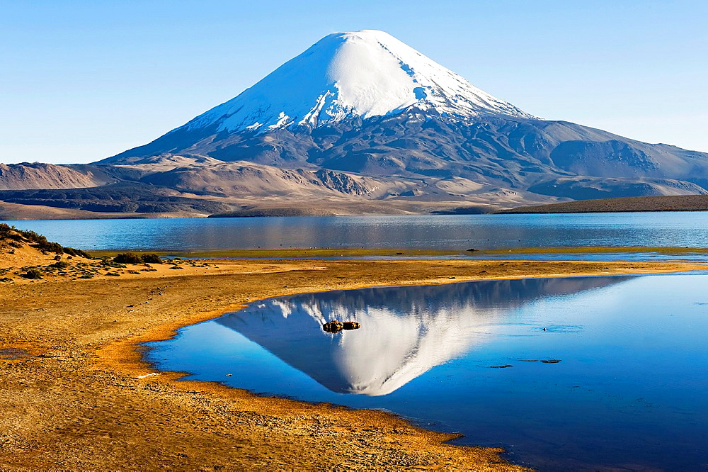Parinacota volcano reflecting in the Chungara lake, Lauca national park, UNESCO Biosphere Reserve, Arica and Parinacota Region, Chile. - 817-472232