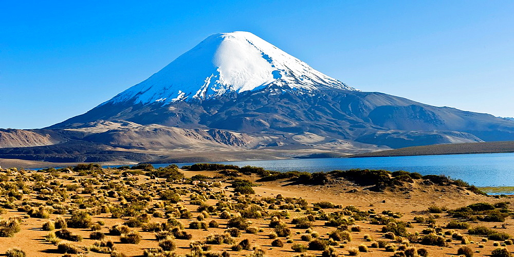 Parinacota volcano, Lauca national park, UNESCO Biosphere Reserve, Arica and Parinacota Region, Chile. - 817-472234