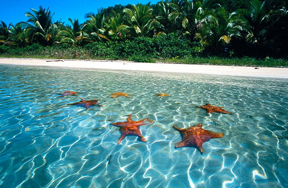 Colon Island, Bocas del Toro, Panama.