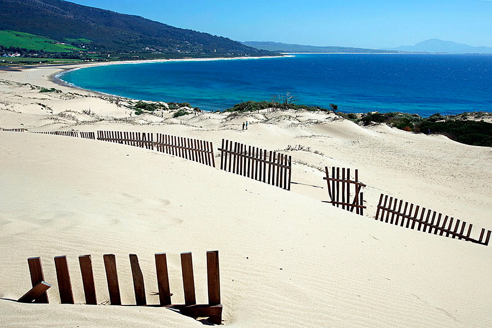 Sand dunes barriers, Valdevaqueros beach, Parque Natural del Estrecho, Tarifa-Cadiz, Andalucia, Spain