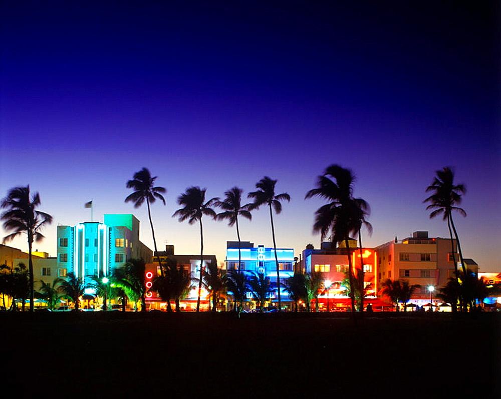 Palm trees & beach, ocean drive, South beach, Miami beach, Florida, USA. - 817-53265