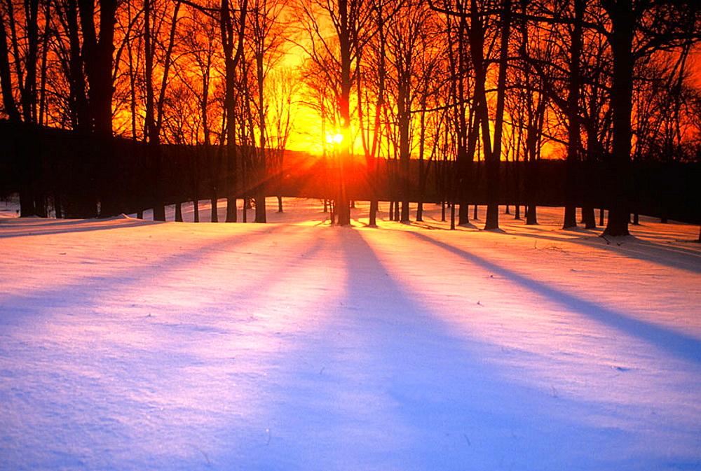 Winter landscape. - 817-56204