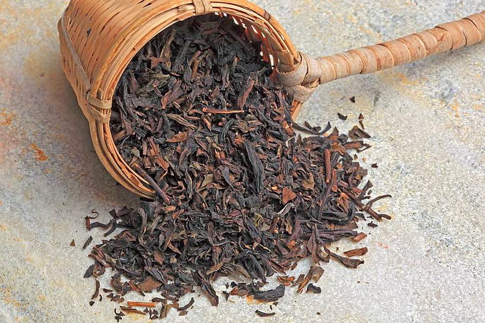 Tee, Lapsang, Lapsangtee, chinesischer Rauchtee, auf Kiefernwurzel geraucherter Schwarztee / Tea, Lapsang, Lapsangtea, a chinese smoked black tea