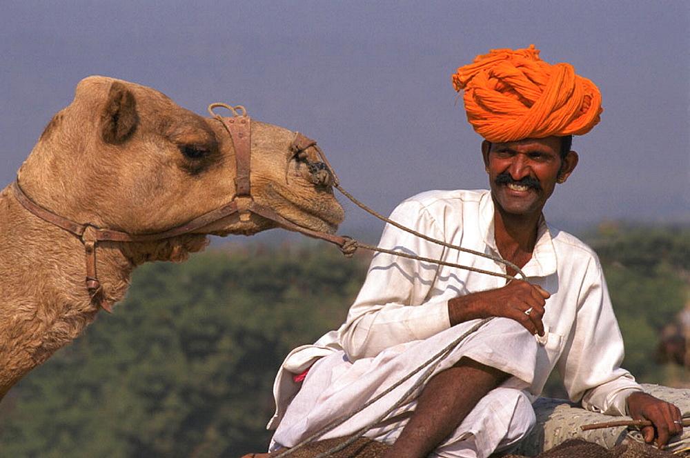 Pushkar camel fair, India - 817-652