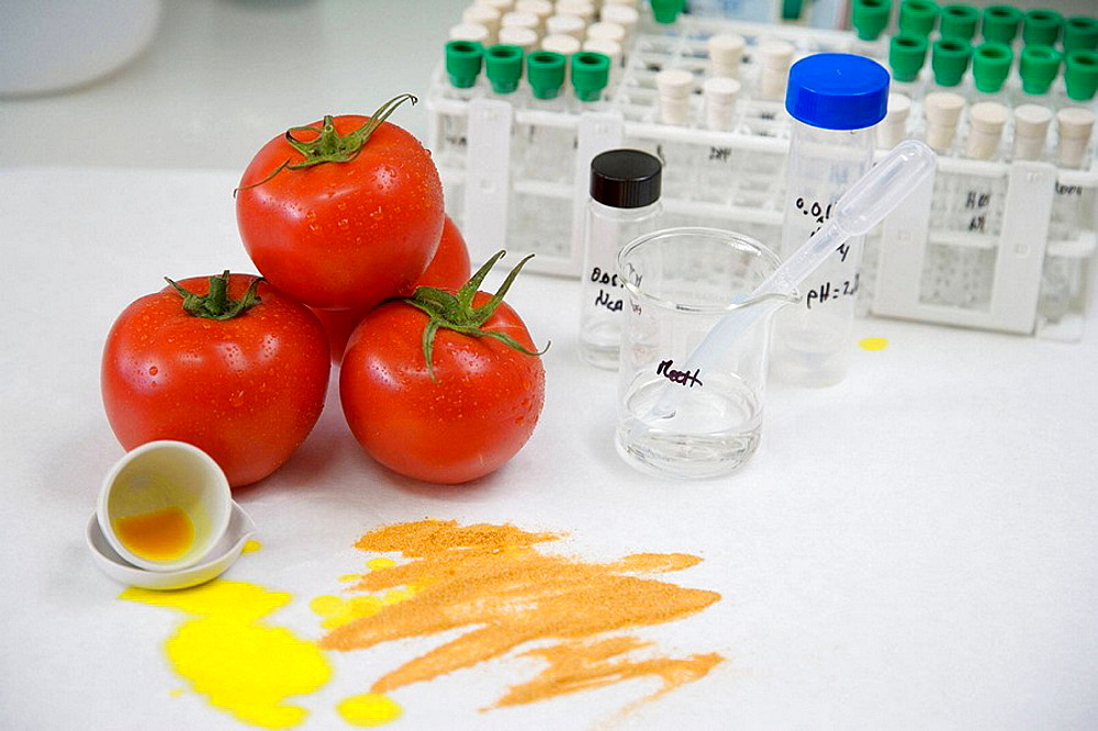 Research and Development laboratory, Functional biomolecules in food extraction, Tomatoe extract, AZTI-Tecnalia, Technological Centre specialised in Marine and Food Research, Sukarrieta, Bizkaia, Euskadi, Spain.