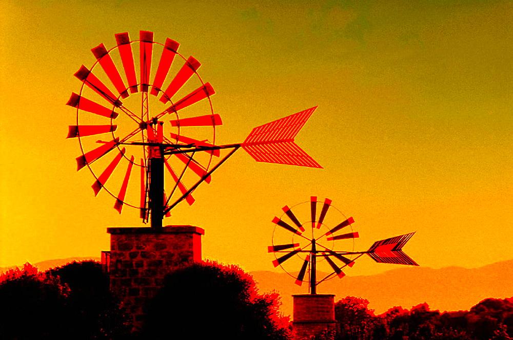 Windmills, Majorca, Balearic Islands, Spain - 817-68720