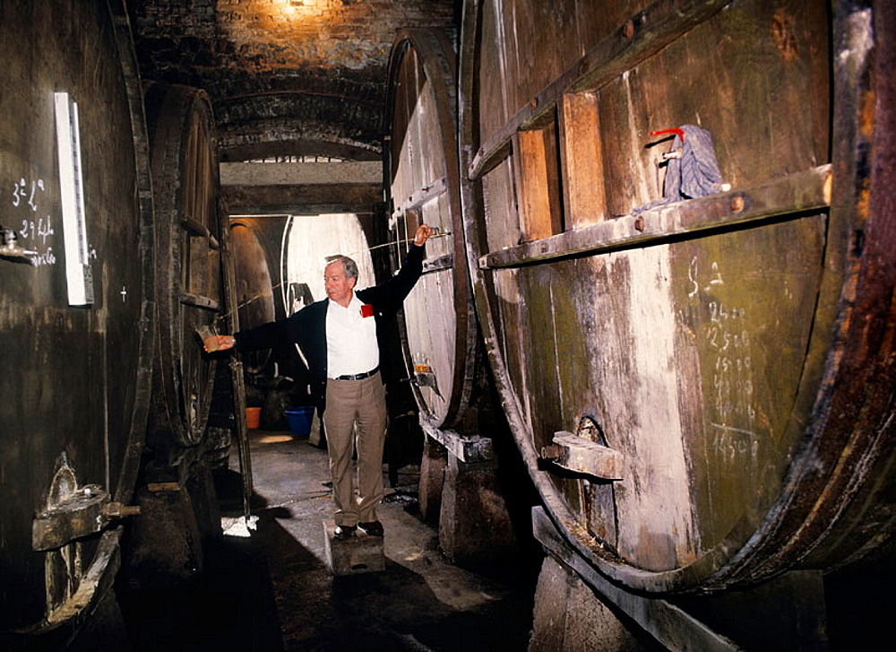Pouring cider at 'Lagar de Vda, de Corsino' (cider cellar) at Nava, Asturias, Spain.