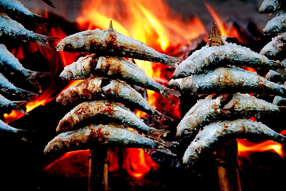 Food: 'Espeto de Sardinas' (grilled sardines) a speciality of Malaga, Spain.