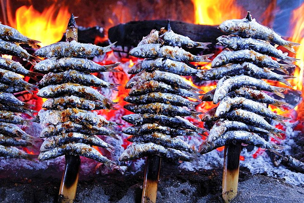 Spain, Malaga, Andalusia, Food: 'Espeto de sardinas' (grilled sardines) at Restaurante Tintoreto.