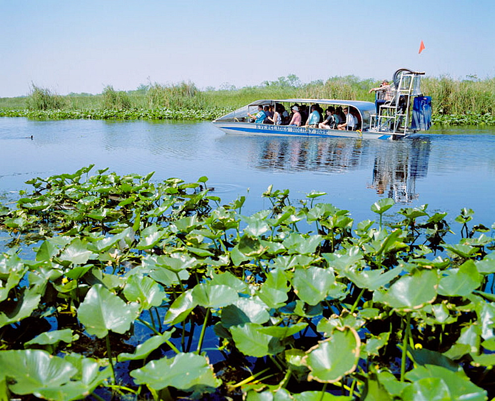 Everglades Holiday Park near Fort Lauderdale, Florida, USA