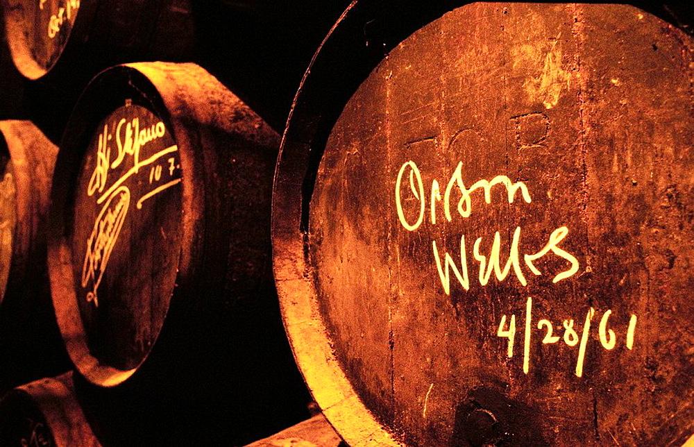 Oak barrel signed by Orson Welles at wine cellar, Gonzalez Byass winery, Jerez de la Frontera, Cadiz province, Spain