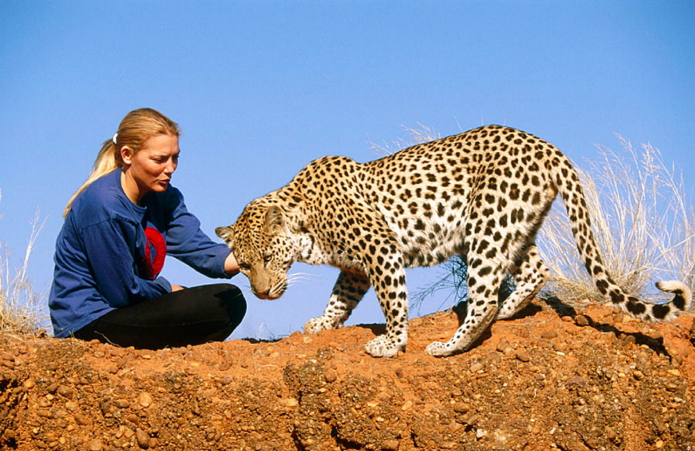 Woman with leopard (Panthera pardus)