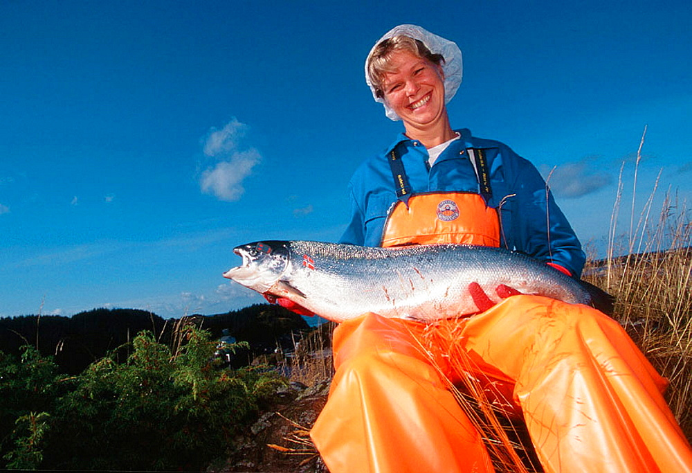 Salmon fishery, Woman holding a Norwegian salmon, Bremnes, Norway