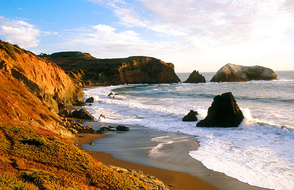 Bird rock, Rodeo Beach, Golden Gate National Recreation Area, Marin County, California, USA