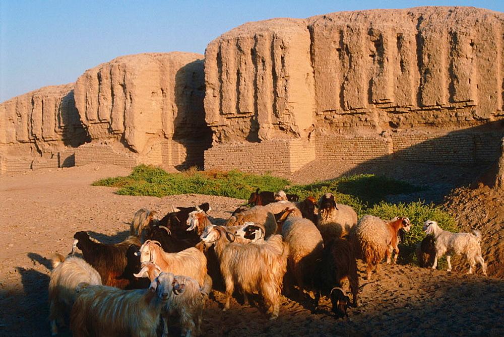 Kish, Irak
