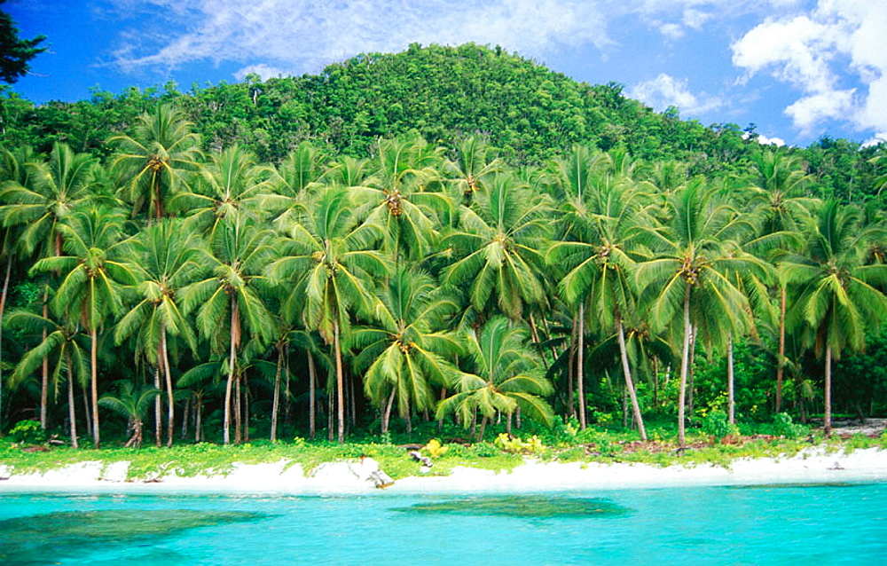 Palm Beach, Solomon Islands
