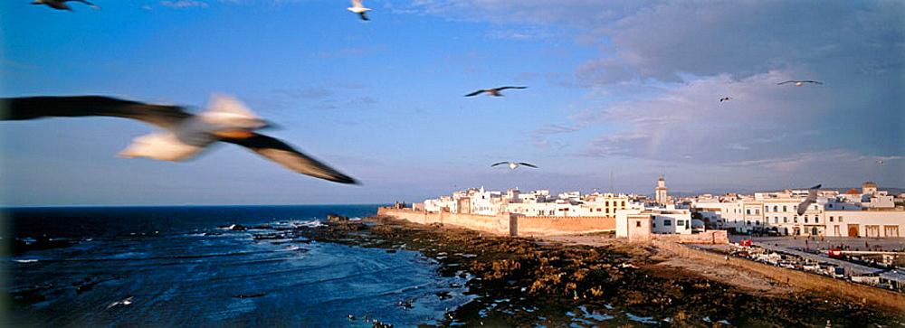 Medina, Essaouira, Unesco World Heritage, Atlantic coast, Morocco
