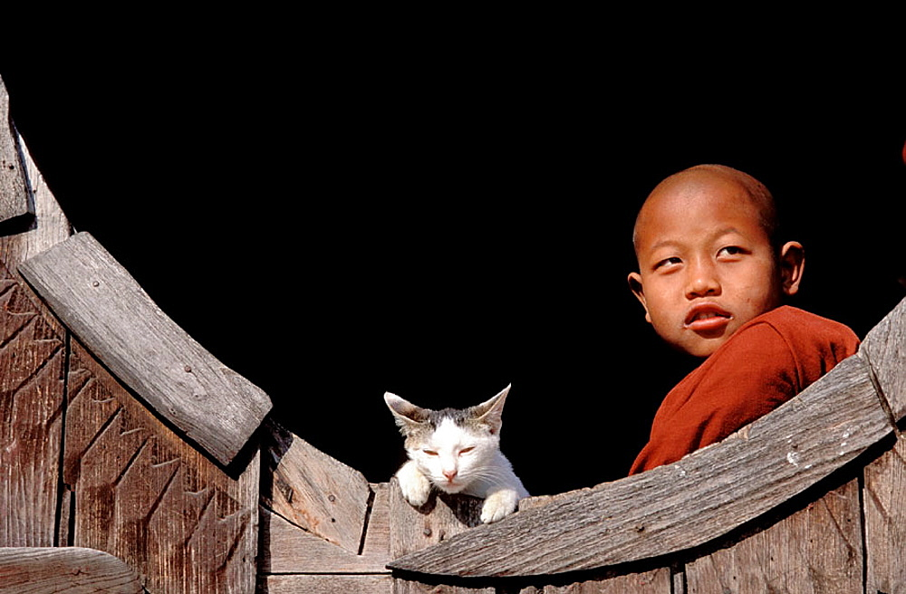 Novice monk at the Shweyanpyay monastery, Inle Lake, Shan State, Myanmar