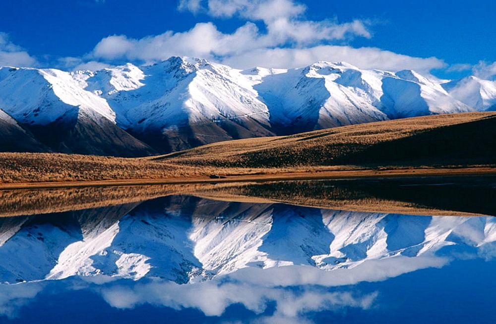 McKenzie Basin, New Zealand - 817-9769