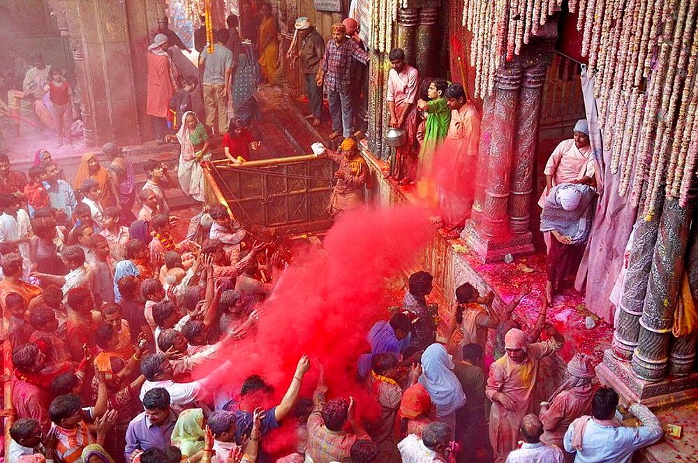 India, Holi festival, color and spring festival. - 817-97905