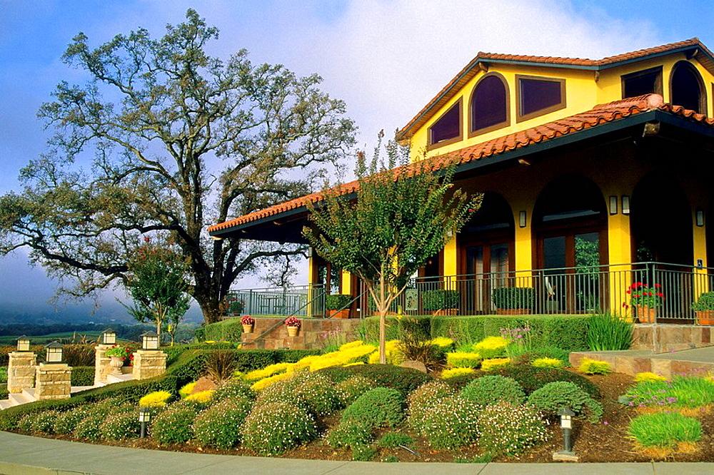 Tasting room, Hanna Vineyards, Alexander Valley, Sonoma County, California