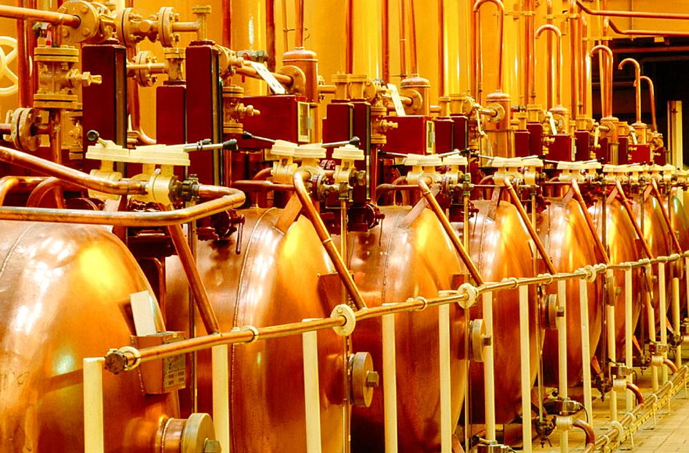 Distillery of Cointreau, France