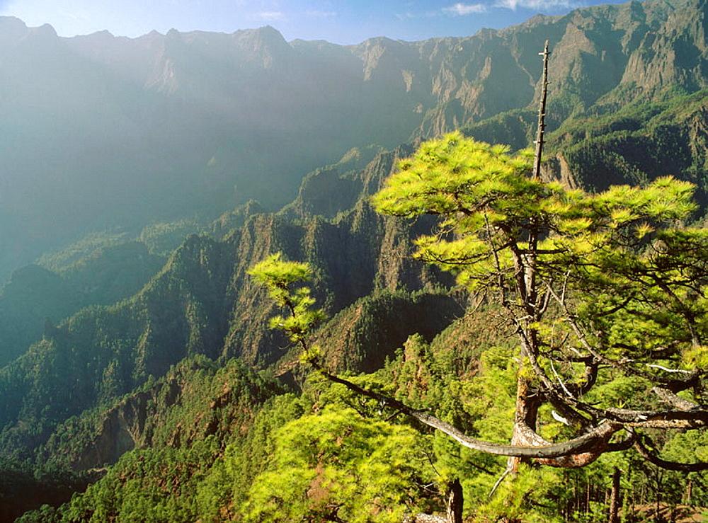 Caldera de Taburiente, La Palma Island, Canary Islands, Spain