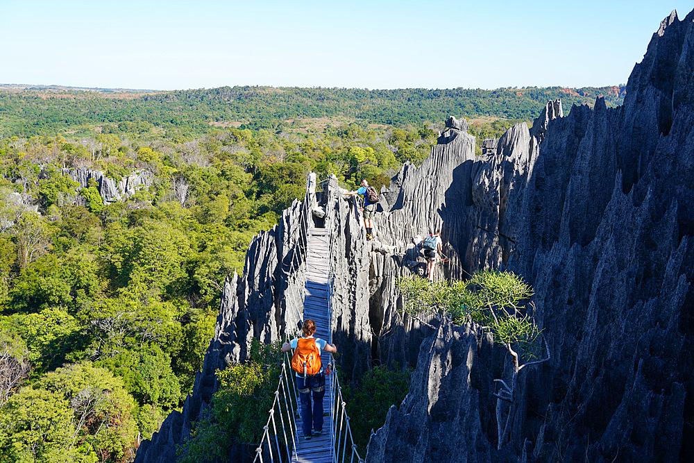 Tsingy de Bemaraha National Park, Melaky Region, Western Madagascar - 819-1008