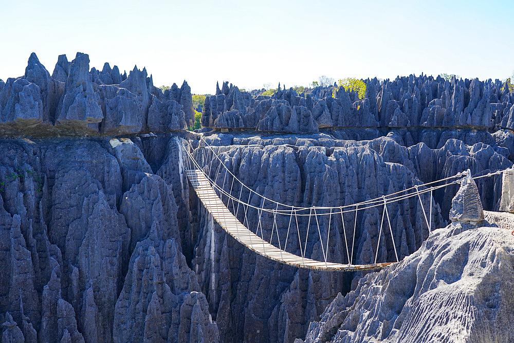 Tsingy de Bemaraha National Park, Melaky Region, Western Madagascar - 819-1010