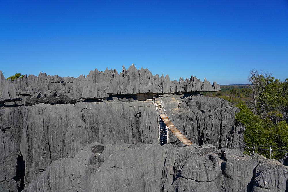 Tsingy de Bemaraha National Park, Melaky Region, Western Madagascar - 819-1012