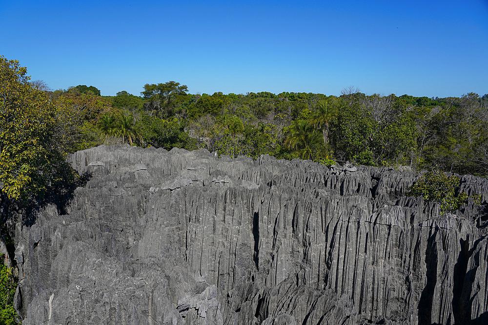 Small Tsingy, Tsingy de Bemaraha National Park, Melaky Region, Western Madagascar - 819-1019