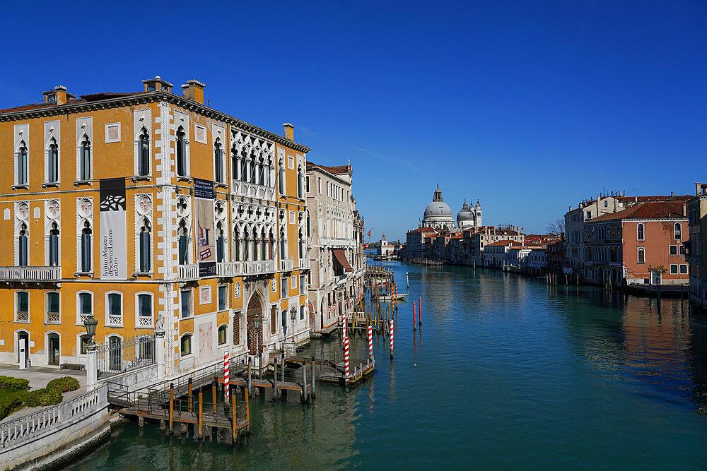 Palazzo Cavalli Franchetti on the Grand Canal of Venice during Coronavirus lockdown, Venice, UNESCO World Heritage Site, Veneto, Italy, Europe
