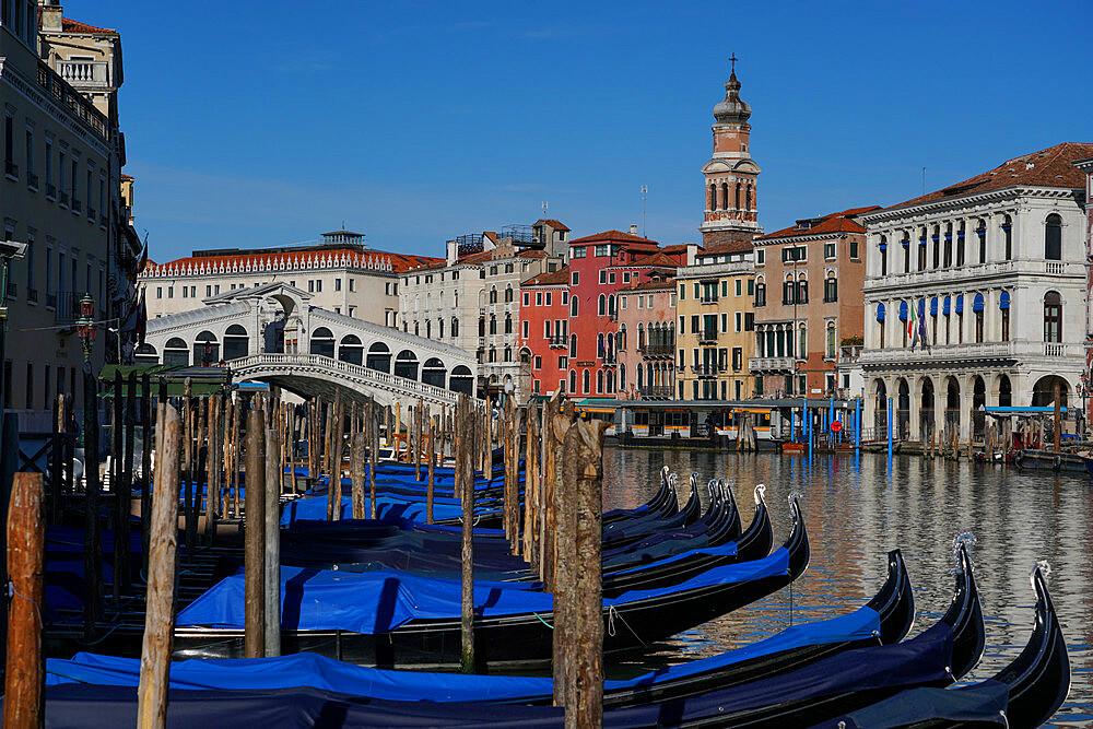 Gondolas on the Grand Canal and Rialto Bridge during Coronavirus lockdown, Venice, UNESCO World Heritage Site, Veneto, Italy, Europe - 819-1278