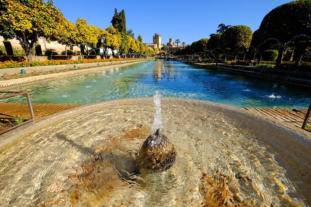 Fountain in the Alcazar de los Reyes Cristianos, UNESCO World Heritage Site, Cordoba, Andalucia, Spain, Europe