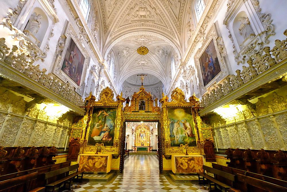 Cartuja Monastery, Granada, Andalucia, Spain, Europe