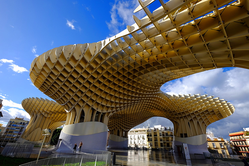 Metropol Parasol, known as Setas de Sevilla (The Mushroom), the world's largest wooden structure, Seville, Andalucia, Spain, Europe - 819-585