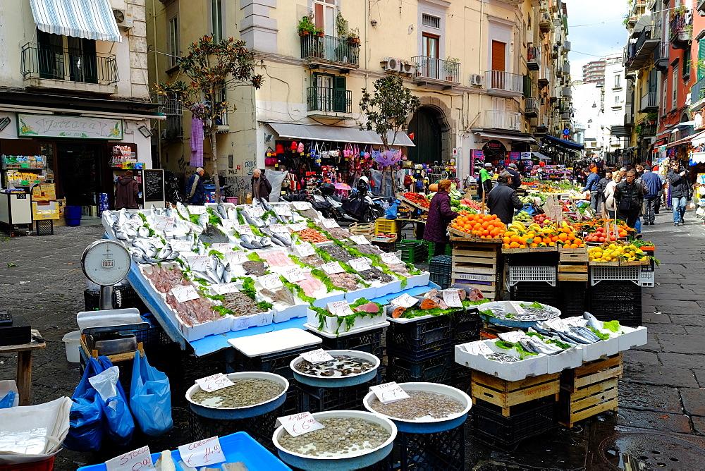 Pignasecca fish market, Naples, Campania, Italy, Europe